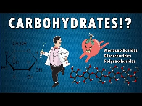 All About Carbohydrates in 6 min! From a HighSchool Student - BIOLOGY | HD