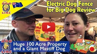 Electric Dog Fence for Big Dogs Review -  Lisa and her Giant Mastiff Dog, 100 Acre property