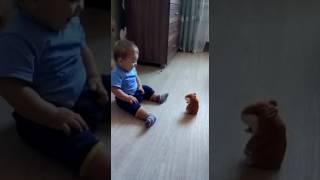 Oyuncak sincabı gerçek sanan çocuk gülmek garanti