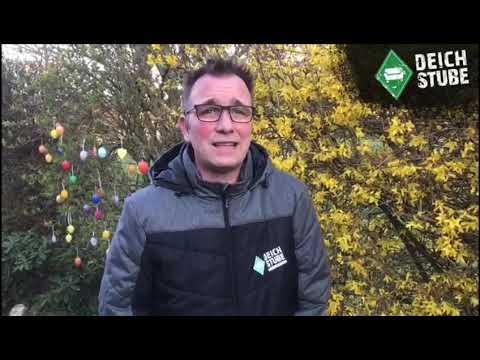 Werder Bremen in der Coronavirus-Krise: Home-Office und Ungewissheit - das ist los beim SVW!