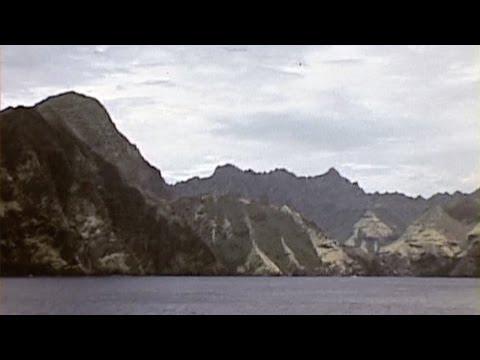 Marquesas Islands Galapagos Pelicans (1940)