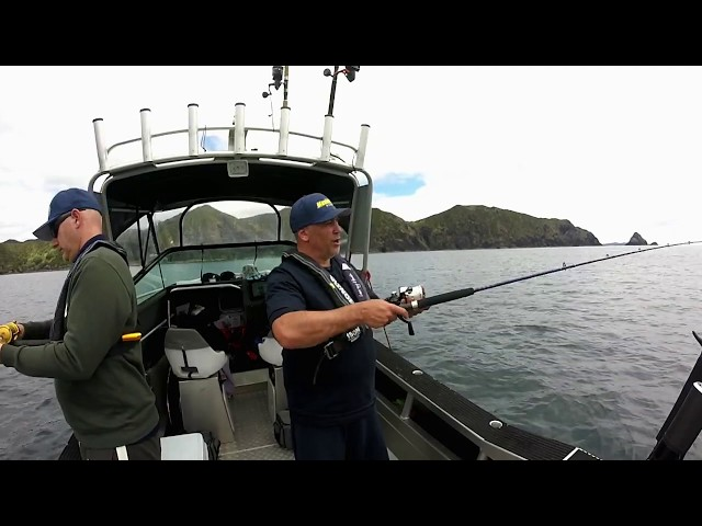 Learn how to catch, fight and release your fish when straylining