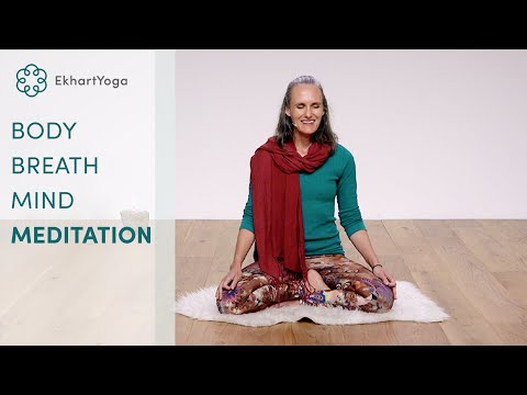 Experiencing body, breath and mind - 15 minute meditation with Tracey Cook