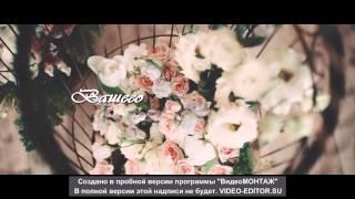 Украшения для свадебной прически (SONATA)
