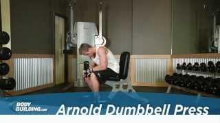 arnold dumbbell press shoulder exercise bodybuilding com