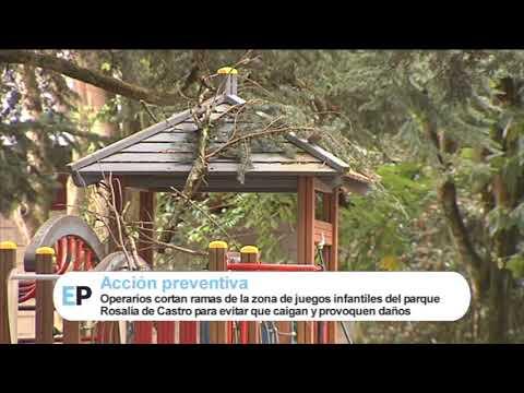Poda en la zona de juegos del parque Rosalia de Castro