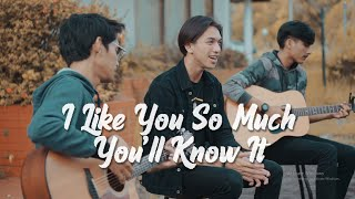 Download I Like You So Much, You'll Know It (我多喜欢你,你会知道) - OST A Love So Beautiful (English Cover by Tereza)