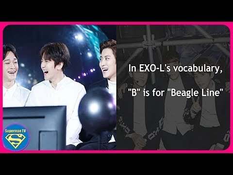 13 Words And Phrases Every EXO L Should Know