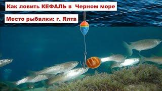 Рыбалка на кефаль.Ловля кефали с берега в черном море в Крыму.