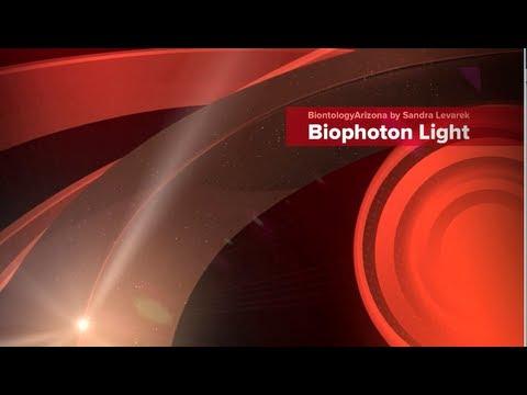 Johan Boswinkel Interview | Biontology | Biophoton light therapy | CHIREN
