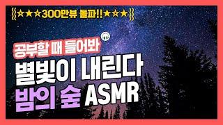 [집중력 높이는 소리] 밤의 숲 소리 효과음 백색소음 ASMR ★ 공신 강성태