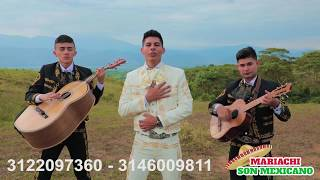 MARIACHIS EN PEREIRA - Te Amare Todas La Vida / Mariachi Son Mexicano