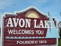 Avon Lake Bald Eagles