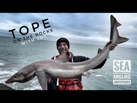 SEA ANGLING ADVENTURES : TOPE ON THE ROCKS