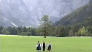 Ansambel Slovenija - Savinjska Dolina