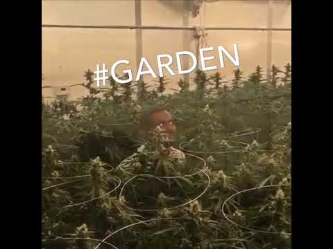 I smell like a Garden