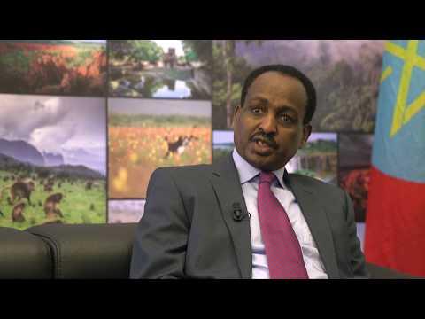 Ethiopian ambassador: Development partners should work in