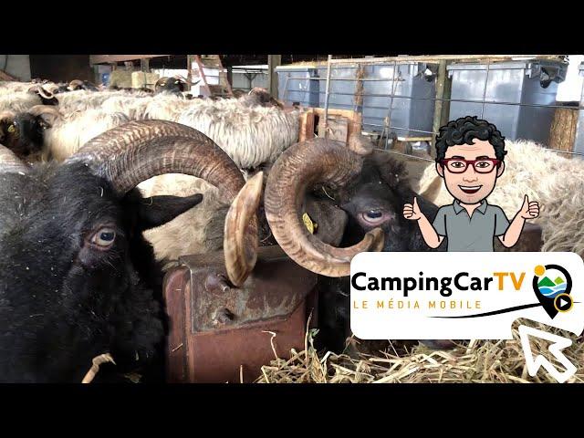 JT en camping-car N°148 - De Saint-Engrâce à Don Quichosse !