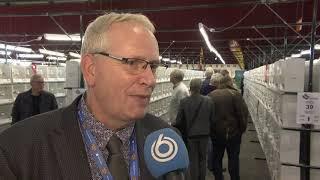 Zwolle is voor even het vogelparadijs van de wereld
