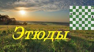 Этюды Шахматы