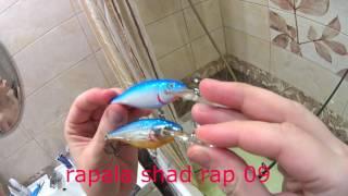 Сравнние воблеров SeaKnight SK011c Rapala Shad rap 09