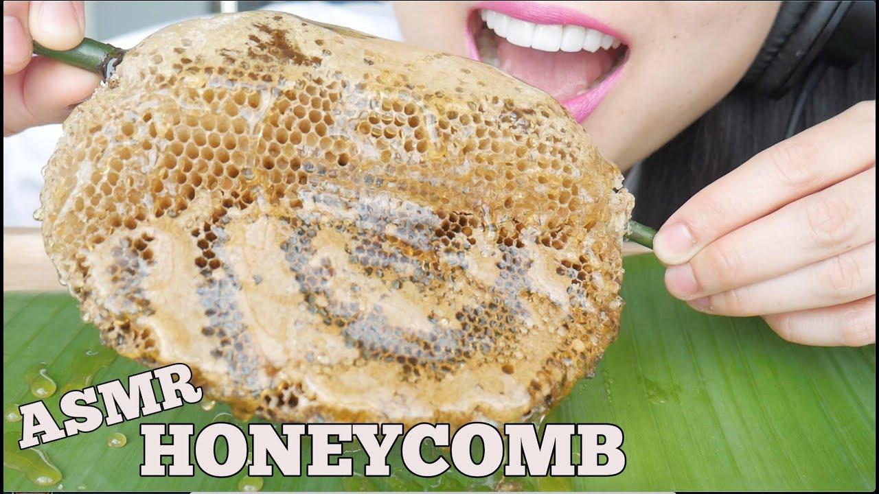 Asmr Raw Honeycomb Sticky Soft Bubbly Crunch Eating Sounds No Talking Sas Asmr Youtube So initially, it was so hard to choose. asmr raw honeycomb sticky soft bubbly crunch eating sounds no talking sas asmr
