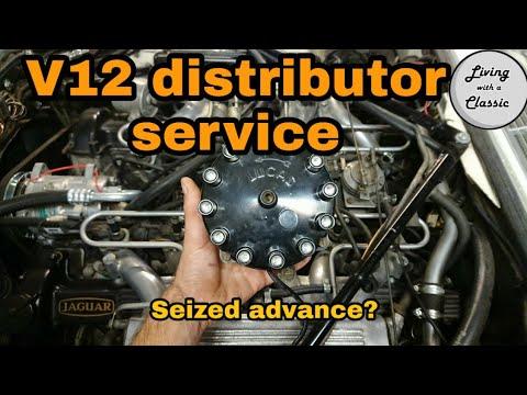 Jaguar V12 Distributor Seized - Check And Service V12 Distributor - How To Tune A Jaguar V12 Part 3