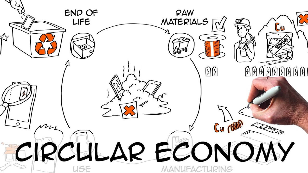 Circular Economy explained with drawings & examples