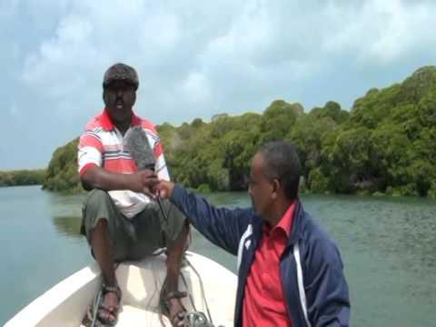 JASIIRADAHA SOMALILAND  SACADA DIIN IYO KUWA KALE