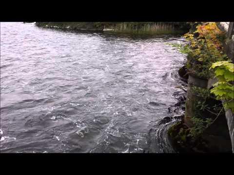 River Corrib - Galway City