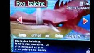 Wii Fishing master Whale shark requin baleine 265.5 t