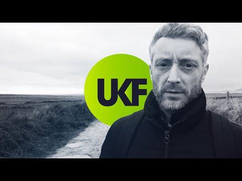 Dua Lipa - Swan Song (Calibre Remix)