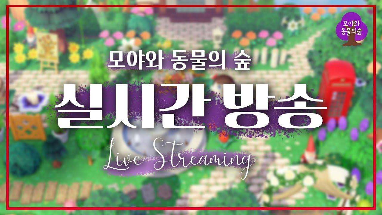 모동숲あつ森 ACNH Live // 9월 23일 갈아엎은 섬 수습 마을 꾸미기!