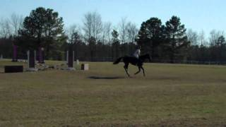 USCA Real Life Equestrian - A look inside of 3-Day Eventing