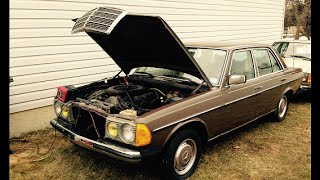 successful first attempt to start after 15 years  w123 1979 Mercedes 250 EURO