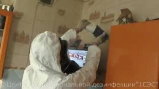 видео Где заказать дезинфекцию помещения