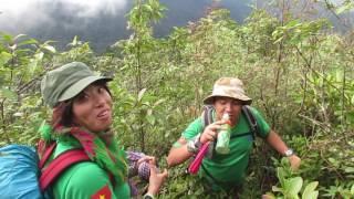 Mẹo sinh tồn- Tìm nguồn nước sinh tồn từ rêu