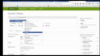 How add domain on vesta cp