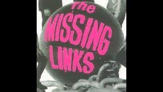 The Missing Links HOBO MAN 60