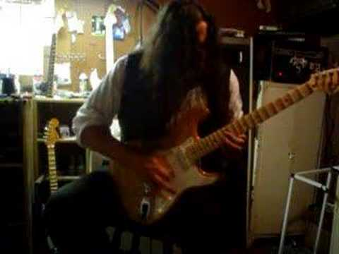 Japanese Ash Stratocaster Yngwie on Ebay