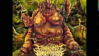 Fermented Masturbation - Whore of Abomination 2014