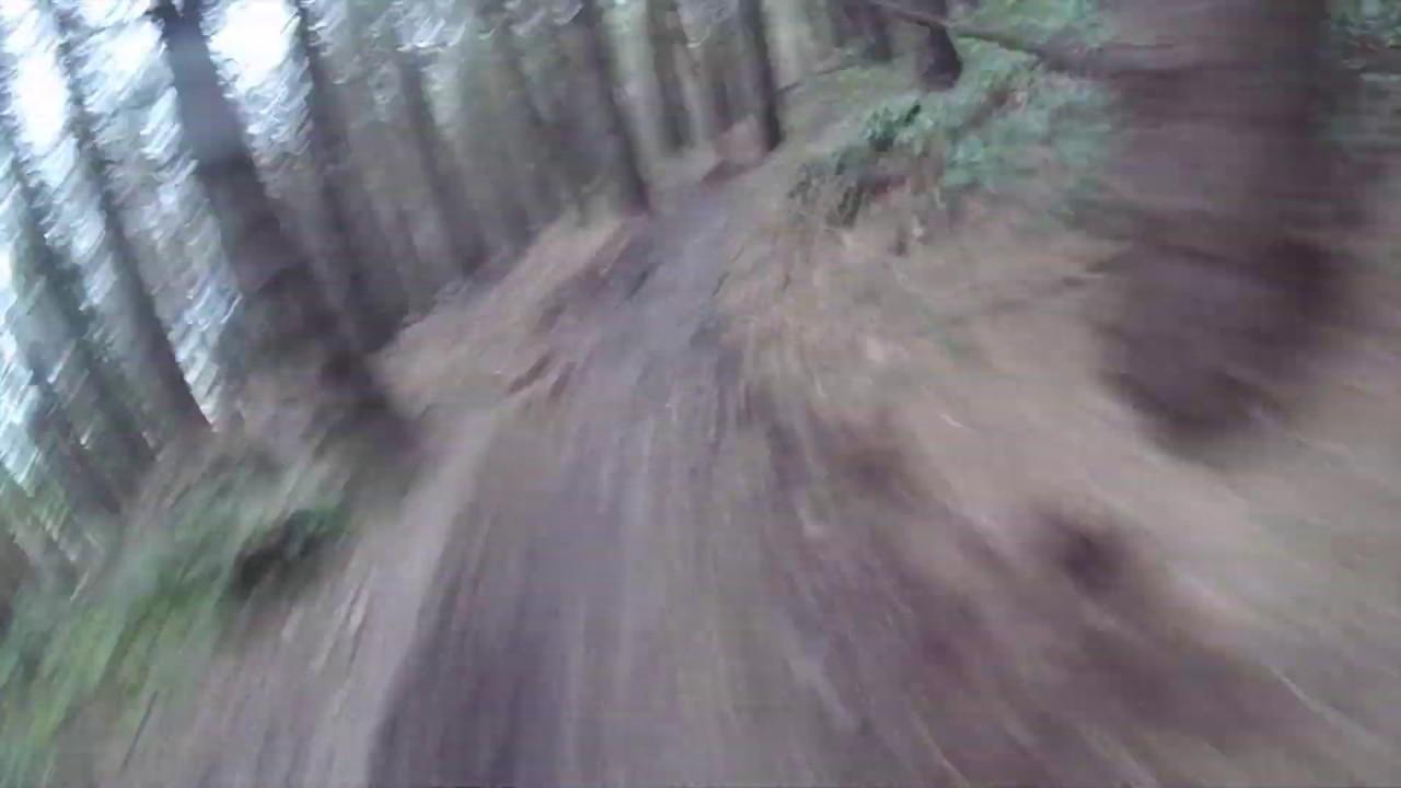 YTP Trail Ballyed Rostrevor MTB Downhill