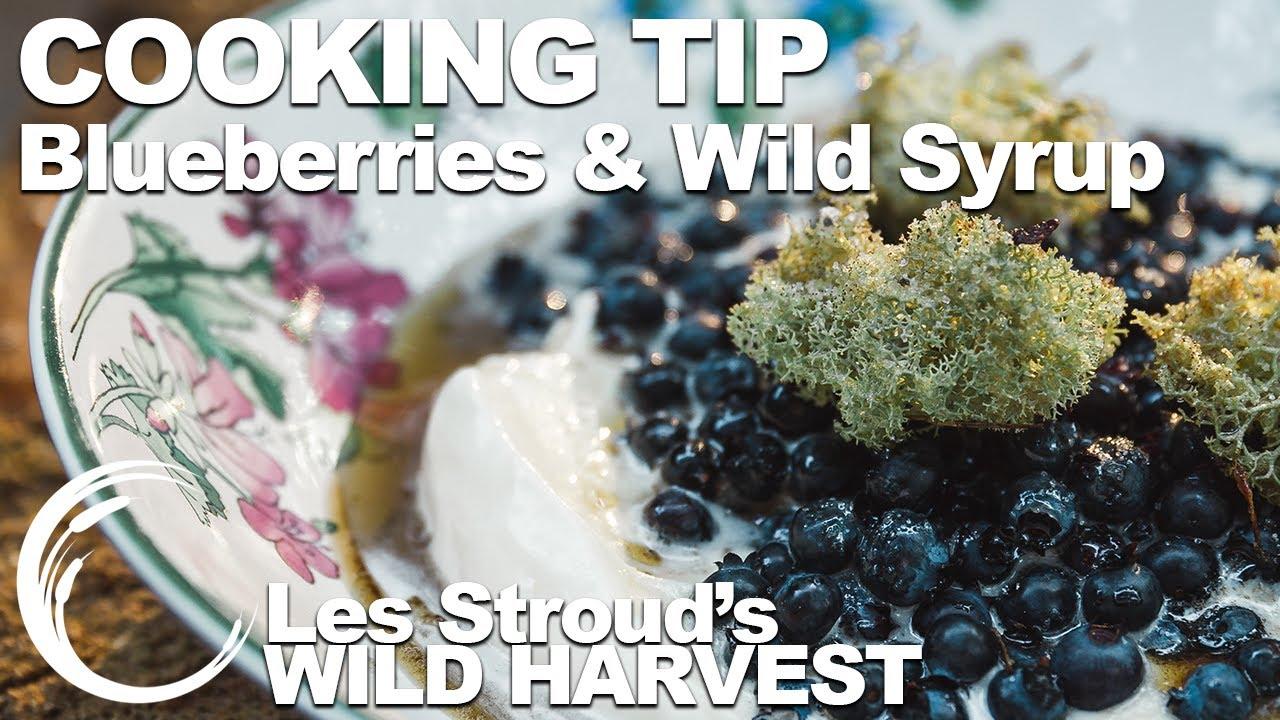 Download Wild Harvest Cooking Tip   Blueberries & Wild Syrup   Episode 7   Les Stroud