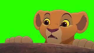 Masking Lion King Giveaway