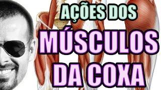 Perna pé e muscular sistema