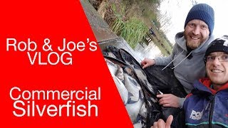 Rob & Joe's VLOG, Episode 7 - Commercial Silverfish - Pole, Feeder & Waggler thumbnail
