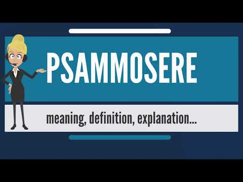 What is PSAMMOSERE? What does PSAMMOSERE mean? PSAMMOSERE meaning, definition & explanation