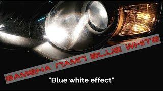 Замена ламп ближнего света на лампы Blue white VW Passat B6