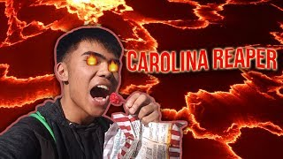 Gambar cover Bringing THE HOTTEST PEPPER IN THE WORLD to School!!!