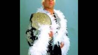 WWF Ric Flair 1991-1993 Theme (Cleaner & Longer)